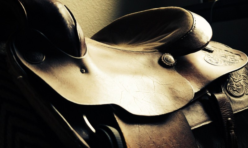 13 Types of Western Saddles: Which One Should You Get?